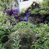 Perennials and garden structure