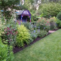 Lawn and perennial beds