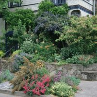 Hardiman garden, street view