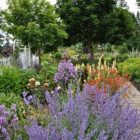 Paved paths mark a perennial bed's edge