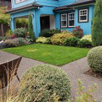 A small urban garden in Portland, OR