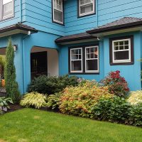 Perennial plantings and a small lawn